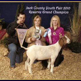 Harbour Livestock | Meat Goat Winners